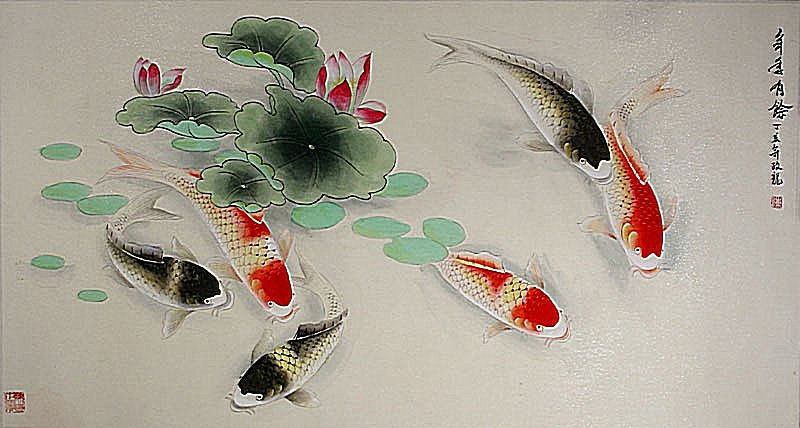 Gbp euro canadian aus for Koi fish store